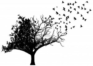 14964492 art tree birds 300x215 Olsun